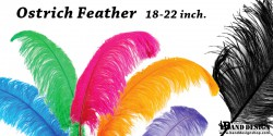 plume 18-22-ostrich feather